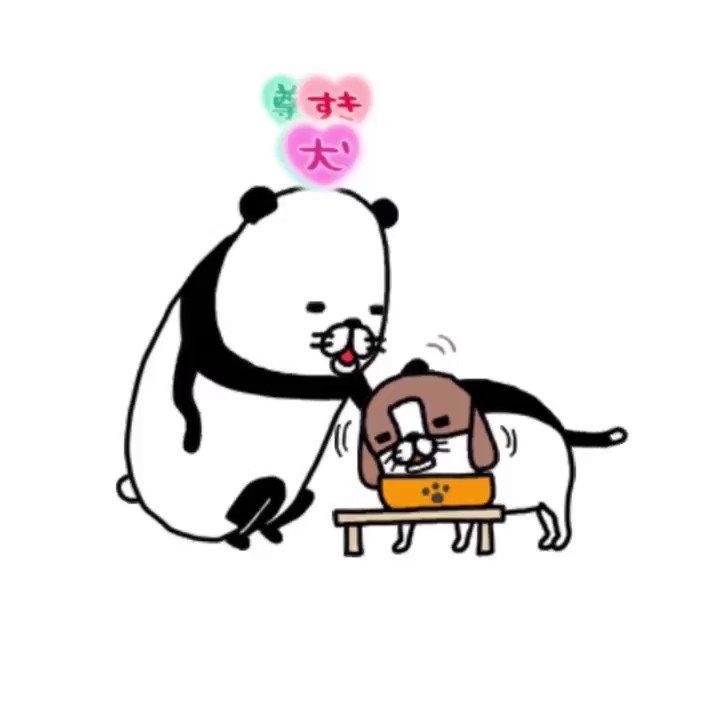 『パンダと犬 いつでも犬かわいーぬ』好評配信中です✨四角いタイプのプロモーションビデオだよ✨ゲームになっても犬かわいーぬ💕 iOSAndroid#パンダと犬 #いつでも犬かわいーぬ