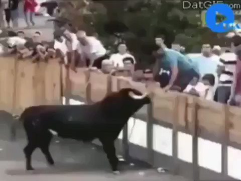 Ojalá  a más  abusadores de animales les pasara esto.