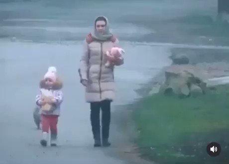 ノリノリな猫が撮影される(ロシア)