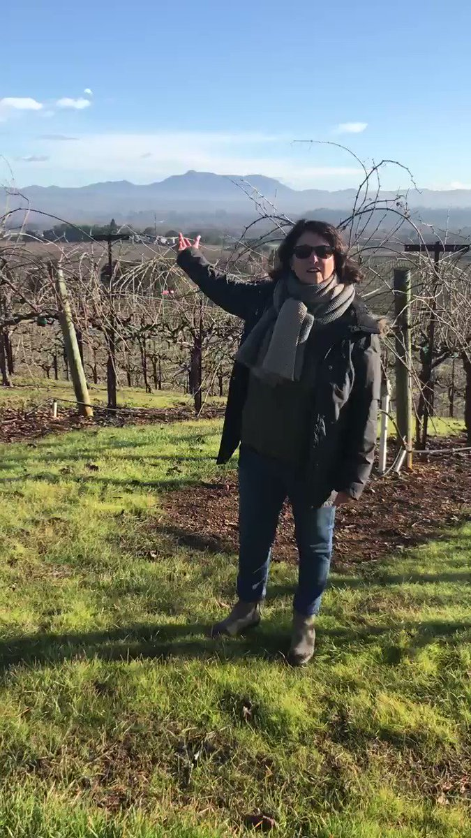 Mountains, we love them. Hiking on Mount St. Helena in Sonoma County #PinkSociety