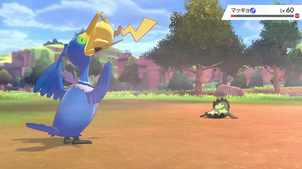 #ポケモン剣盾 #NintendoSwitchピカチュウの股間がえらいことに