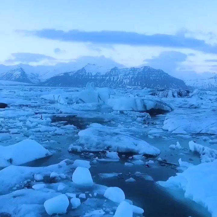 2020s top global risks are all environmental! #ClimateChange #BiodiversityLoss via @IPBES @wef @evankirstel @ipfconline1 @Paula_Piccard @sebbourguignon @labordeolivier @kalydeoo @Ym78200 @chboursin @Nicochan33