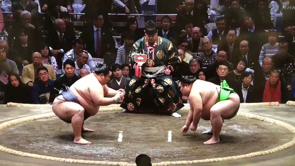 Day10 #TokuShoRyu is ALSO 9-1 so better start showing his bouts (he's just never been a rikishi who floats my boat, so don't post his bouts much). He's been largely a juryo denizen for some time. Here he is vs #HisRoundness #ChiyoMaru which is always another reason to post. :)