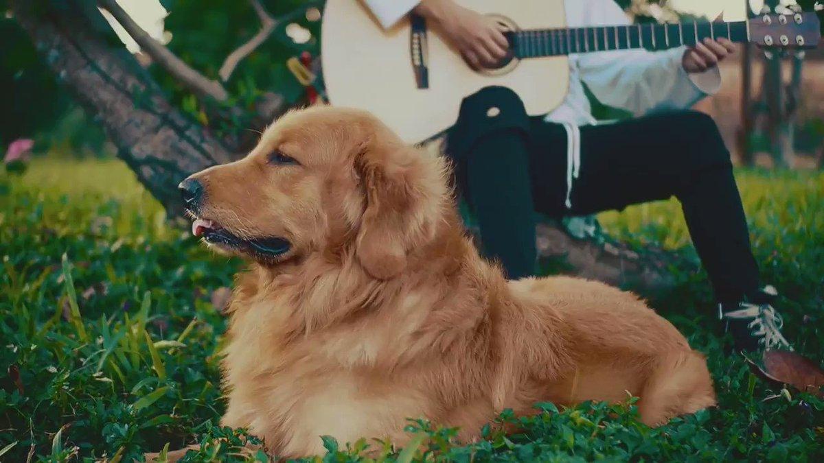 In case youre having a sorta ruff week, let Bun & Orin serenade you:   https://youtu.be/AAn1C-ANQek
