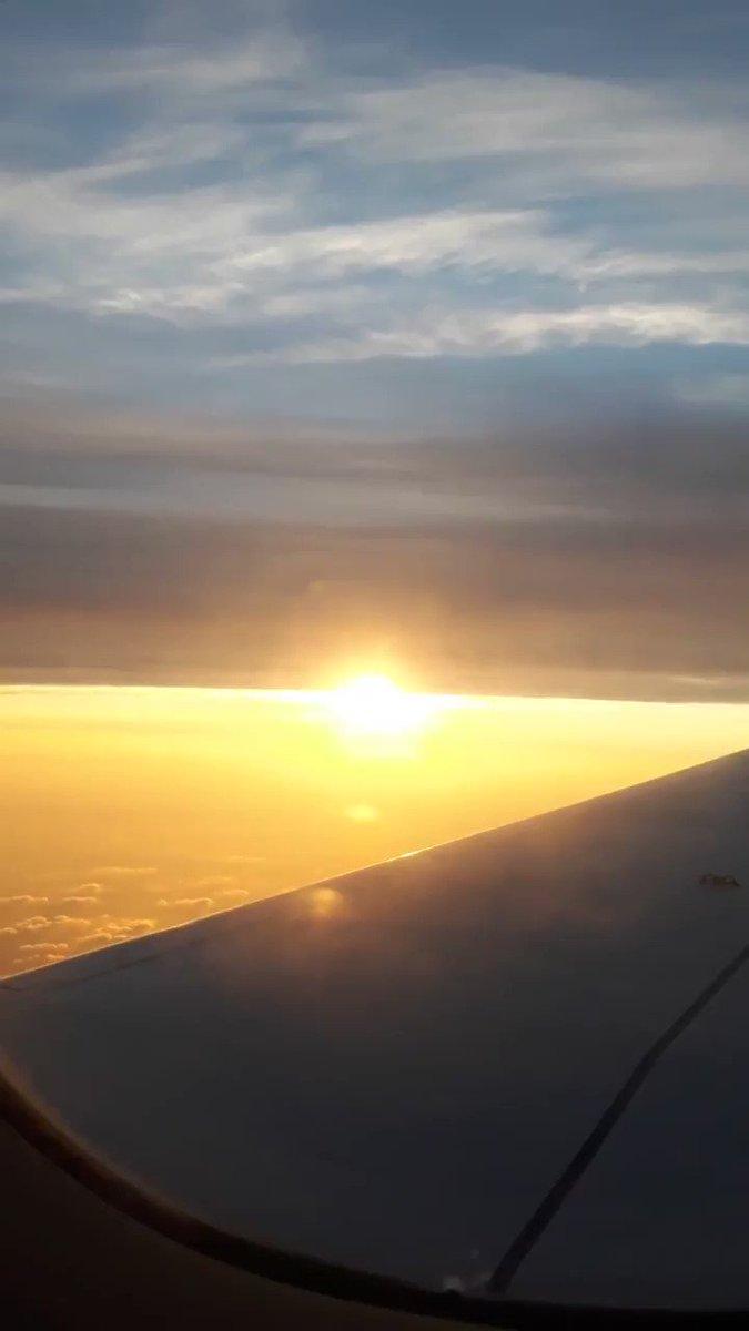 たらいも沖縄!2020/1/23(イチ,ニッ,サン!!)の日の出を見ながら無事に帰国完了。で、取引ツールを平常運転にセットしてたら、ここ数日盛り上がってた個別株バブルすでに終わってた… クゥン………ちなみにタイの空港では、外人さん旅行客の1割くらいの人がマスクしてたよっ!(=゚ω゚)ノ