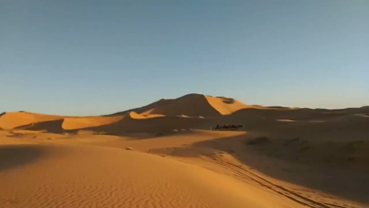 Camel Trip Morocco Enjoy the Desert with the Nomads  Email:cameltripmorocco@gmail.com  #Merzouga #Sahara #Desert #Ergchebbi #Cameltripmorocco #Moroccanculture #Saharanight #Cameltrip #Moroccotrip #Nomad #Saharacamp #cameltrip #Moroccotour #cameltripmorocco