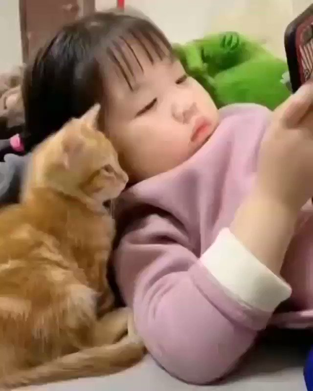 Goodnight All My Lovely Friends☄ Think of Good Moments of This Day & Keep a Smile for Tomorrow! Good Night!🌹 Sweet Dreams..☄💫 #goodnight #ThursdayThoughts #cutebaby #baby #CatsOfTwitter #Cat #Caturday #SweetDreams #Kids SO CUTE AND ADORABLE!!👧🐱💕💫🤗