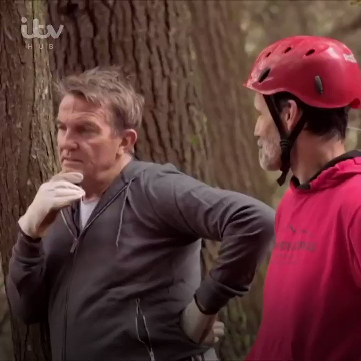 It's time for @BradleyWalsh to face his fears. Bradley and Barney go abseiling down Red River Gorge, Kentucky. 🧗♂️ Bradley Walsh & Son: #BreakingDad, Watch now on @itvhub