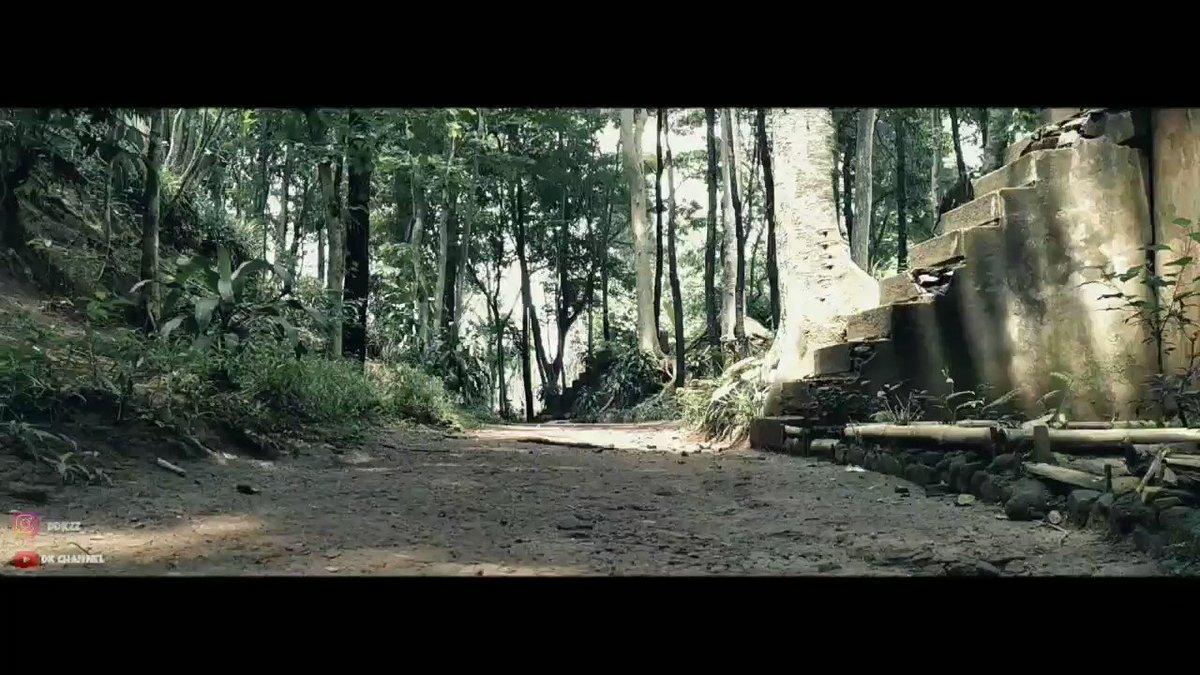 Hutan pinus palasari sumedang.  #sinematic #Orangkayagatau #becandasayang #CHEN #2YA2YAO https://t.co/rbP1U75P6C