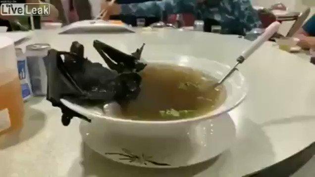 食べる 中国 コウモリ
