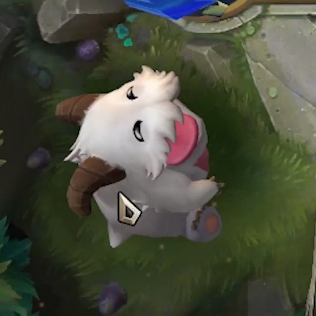 In Legends of Runeterra, poking the Poro repeatedly will result in the creature aiming an angry raspberry at the player.