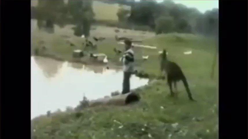 Wishing everyone a happy Australia Day! 🇦🇺