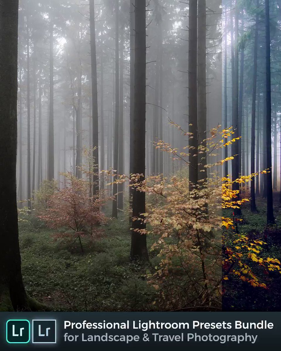 Professional #Lightroom Presets Bundle for Landscape and Travel Photography:  Get the only Lightroom presets bundle you'll ever need. #landscapephotography #NaturePhotography #nikonphotography