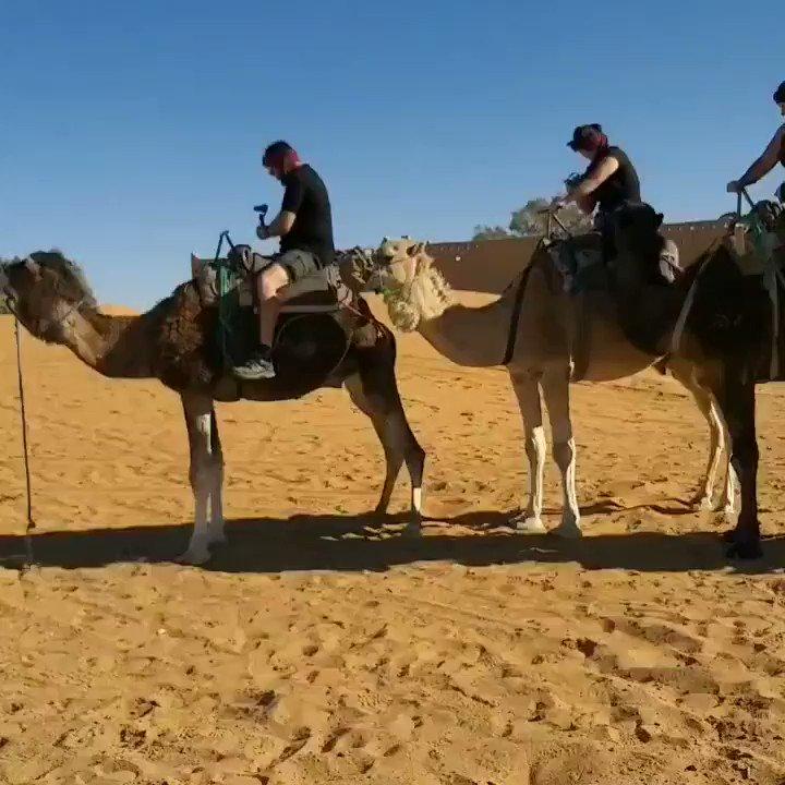 Camel Trip Morocco Enjoy the Desert with the Nomads  #Merzouga #Sahara #Morocco #Desert #Cameltrek #Visitmorocco #Ergchebbi #Cameltripcamp #Moroccanculture #Saharanight #Cameltrip #Moroccotrips #Nomad #Saharacamp #cameltrip #Moroccotour #cameltripmorocco