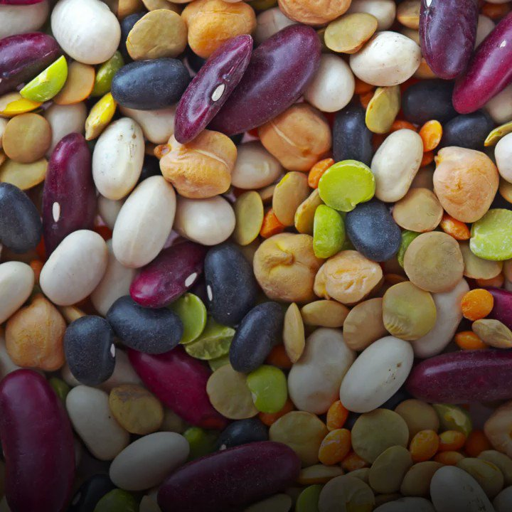 Did you know pulses can increase #biodiversity? But how? 🎥Watch to find out 👇 #WorldPulsesDay #LovePulses