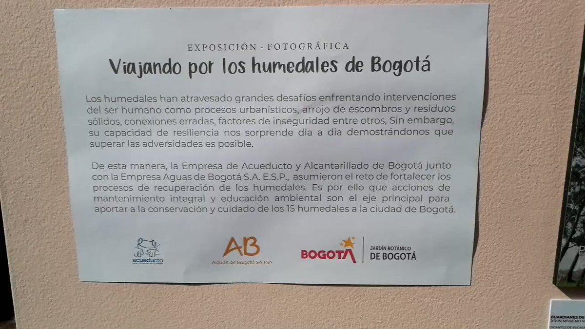 ¿Ya visitaste la exposición fotográfica 'Viajando por los humedales de Bogotá'? Puedes encontrarla en nuestro Domo educativo.Estamos en el mes de los humedales, conócelos y protégelos 🌿