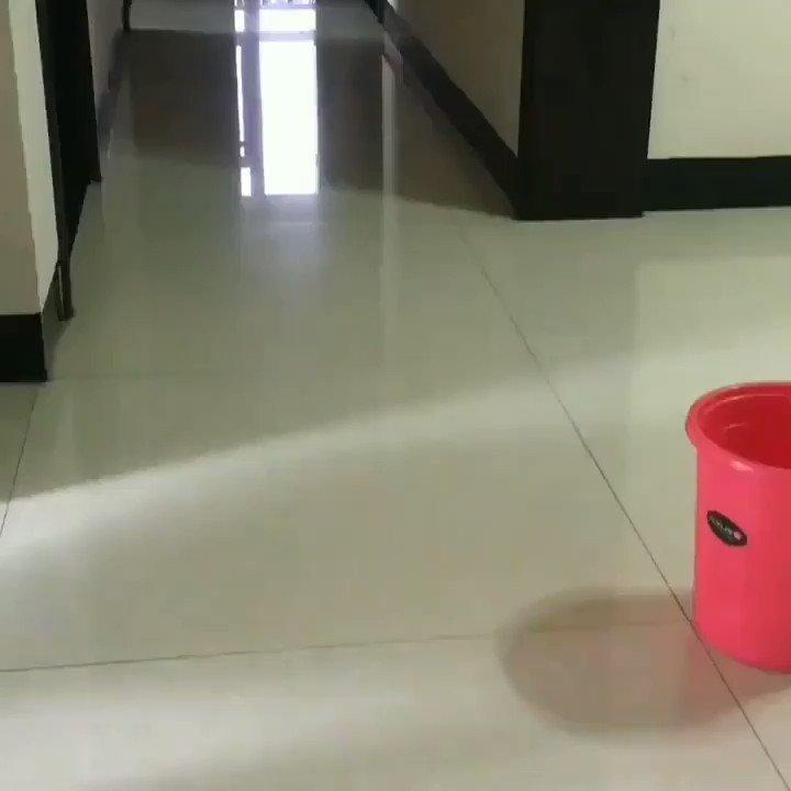 袋をゴミ箱に簡単にはめる方法