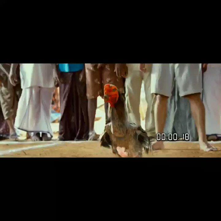Replying to @MrDFan1: த்தா இன்னக்கி தரமான சம்பவம் இருக்கு💪💪 @dhanushkraja  #D40Firstlook #D40MotionPoster
