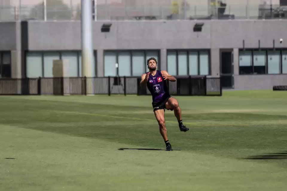 Image for the Tweet beginning: Leaping Logue 🚀 #foreverfreo