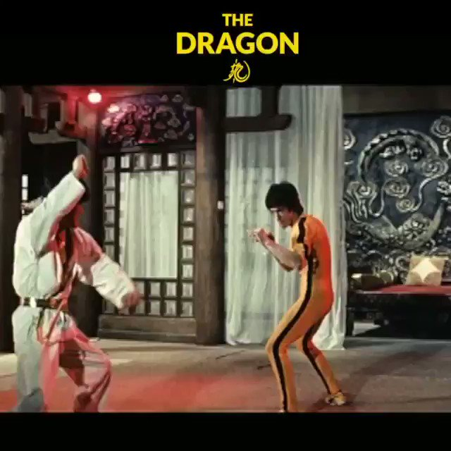🐉🔥The Dragon