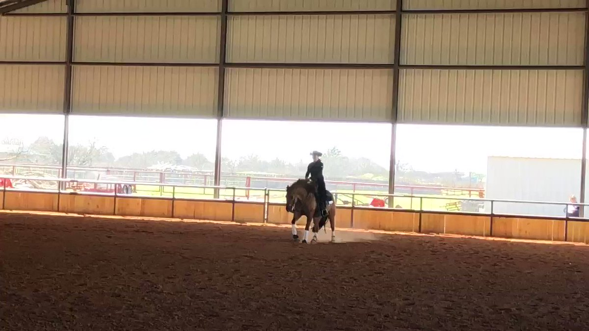 TCU's @carlyy_lombard in Reining action today for the 7th-ranked @TCUWEquestrian program!