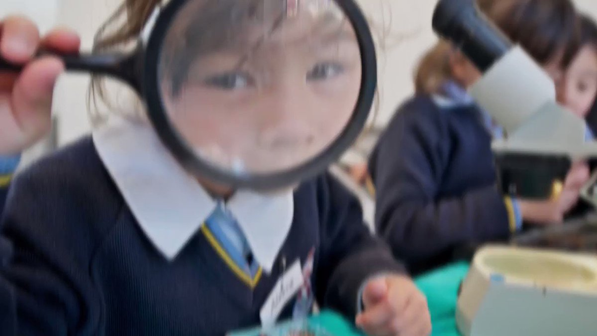 We aspire for our students to be curious, creative, confident, and compassionate citizens of the world. We're now enrolling for 2022 onwards - join us at Whole School Open Day on 3 March to find out more.