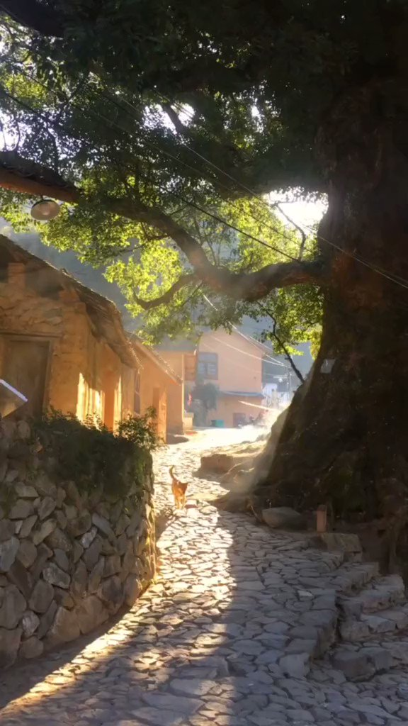 中国南方の田舎の原風景。