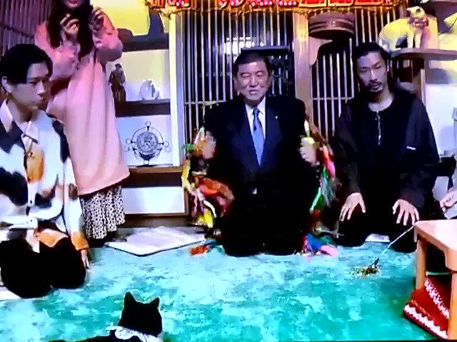 #国会 #激震 ❗ #日本 の  #次期総理大臣  #石破茂 氏 #ねこ #猫 に大モテ