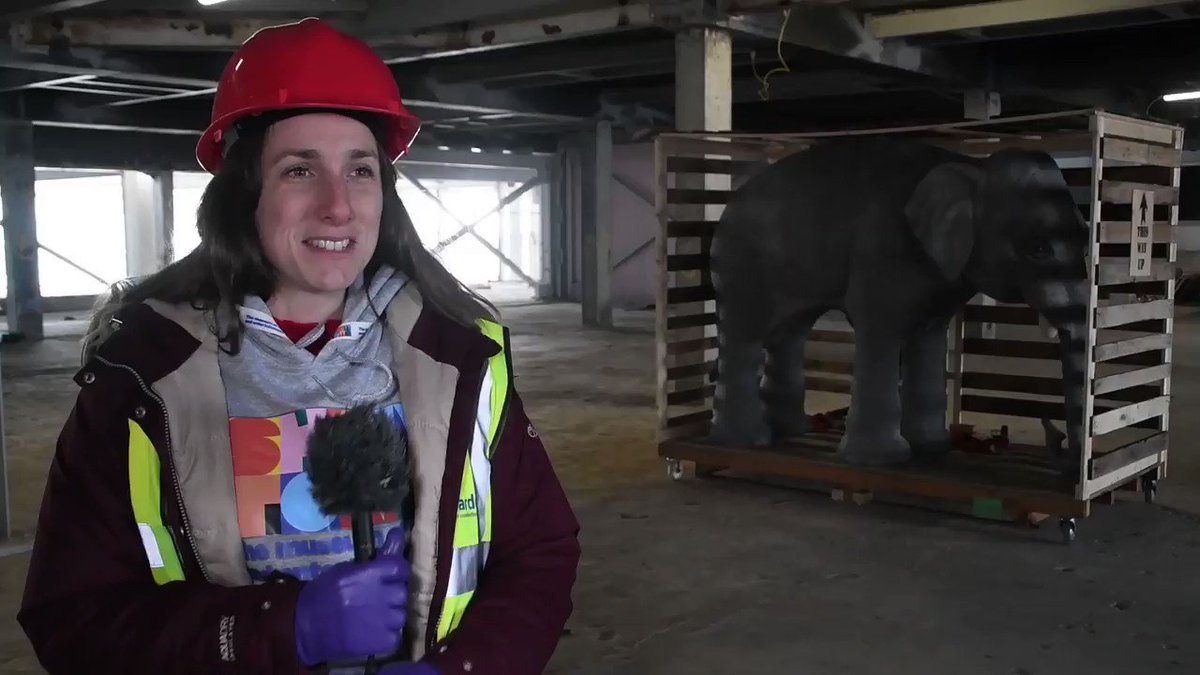 As main contractor for the @SandsVenue, which incorporates @ShowtownBPL, we paused works for the arrival of an 80kg model elephant & carefully removed part of the storage crate. This is definitely first of a kind for our site team! @SandsVenue @FWPGroup #visitblackpool