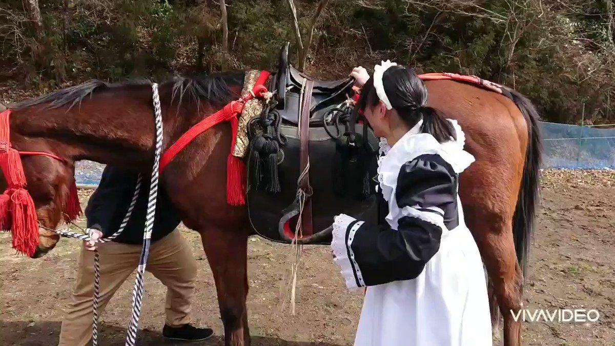 メイド乗馬