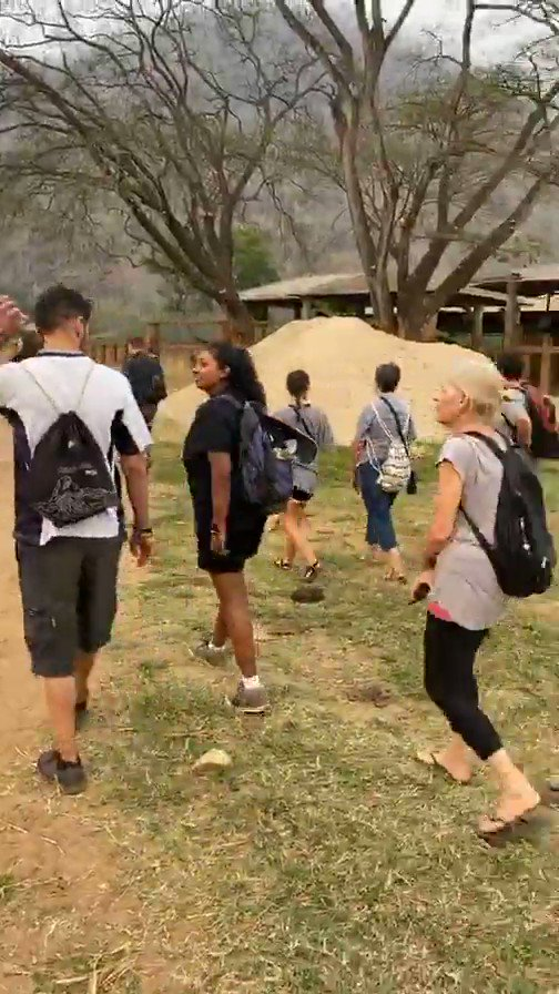 INSTAGRAM LIVE VIDEO: A portion of video from @christinamoses documenting with @JamesRoday some of what they've learned at the @ElephantNatureP sanctuary. Of course humor included. Watch full video on Instagram app over at @christinamoses