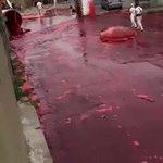 まさに血の海・牛の血液(500,000リットル)を運ぶトラックが爆発して血の海になっている・・・。