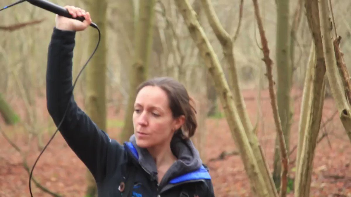 Big THANK YOU to everyone who has supported us so far! Weve received some generous donations outside of the Crowdfunder too, so were picking up momentum towards our ambitious funding goal! 🤞 Got 1min 18s? Check out our video about #BATS & NDR Western Link 👇 Can you help?