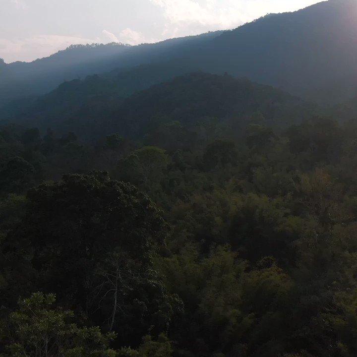 Nouvelle vidéo ! En janvier dernier je suis parti en immersion dans un village au Laos avec l'ONG Enfants D'Asie @enfantsdasie, une grosse claque  https://t.co/A6EkbMtJtl  Bon confinement et bonne vidéo, restez chez vous ! https://t.co/lvrysgcr0A