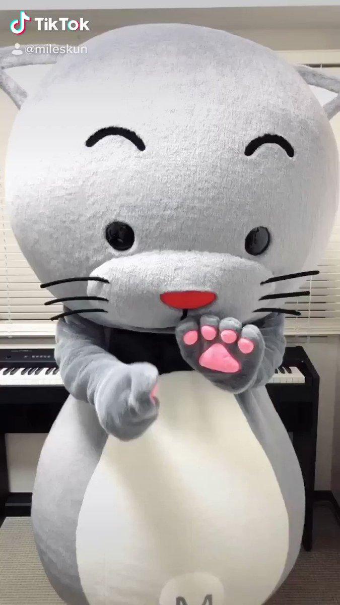 まいるすくん♪です。TikTok【スーパーシロ体操】やってみたよ!みんな歌ってね♪〈歌詞〉君はスーパーシロ実はスーパーヒーローわたあめふわふわベイベー平和を守ってる君はスーパーシロお腹空いても世界のために立ち上がる#クレヨンしんちゃん#SUPERSHIRO