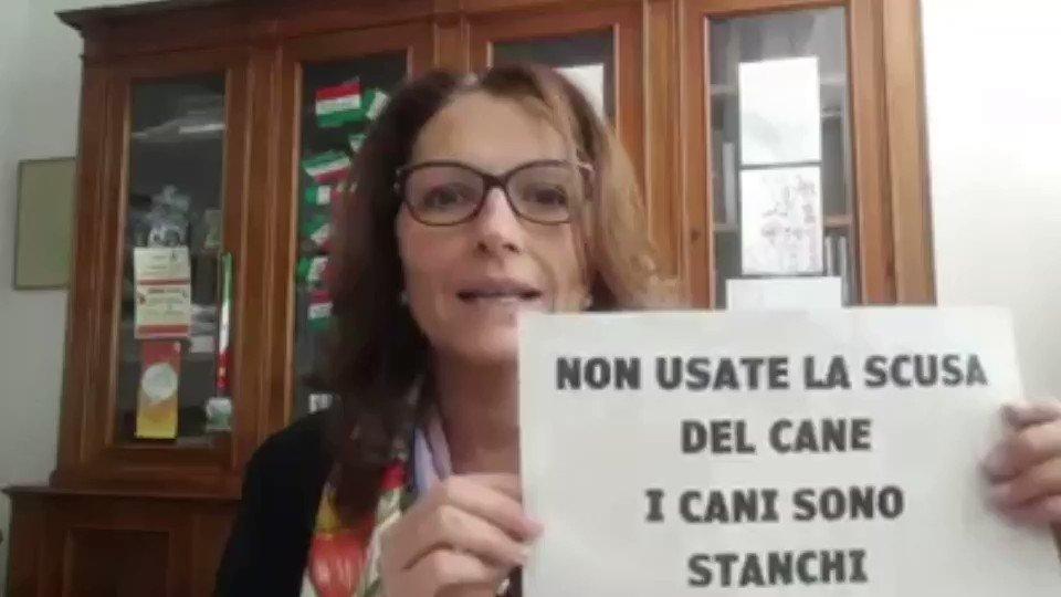 Italian Mayors loosing their shit..part 2 #COVIDIDIOTS #StayAtHomeOrder #StayAtHomeSaveLives