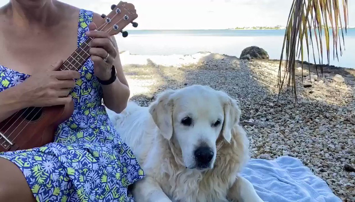 """Ukulele practice with Chief Brody, """"show me the way to go home"""""""