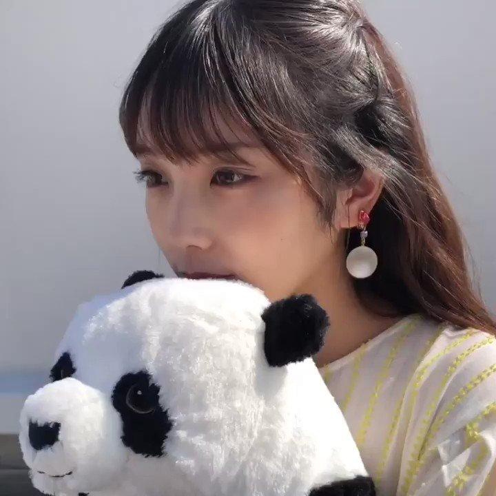 パンダと与田ちゃん🐼#与田祐希2nd写真集  #与田祐希 #無口な時間 【Amazon】