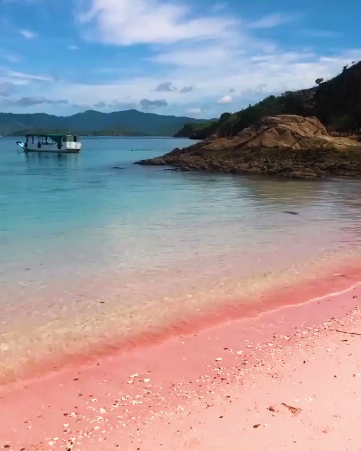Who wants to visit this pink beach CREDIT —> @travelbuddies_id  • • #pinkbeach #beach #beachvibes #travelgram #travel #traveltheworld #travelblogger #traveling #travelphotography #amazingviews #bluesky #amazingbeachespic.twitter.com/kqN2MZCkzz
