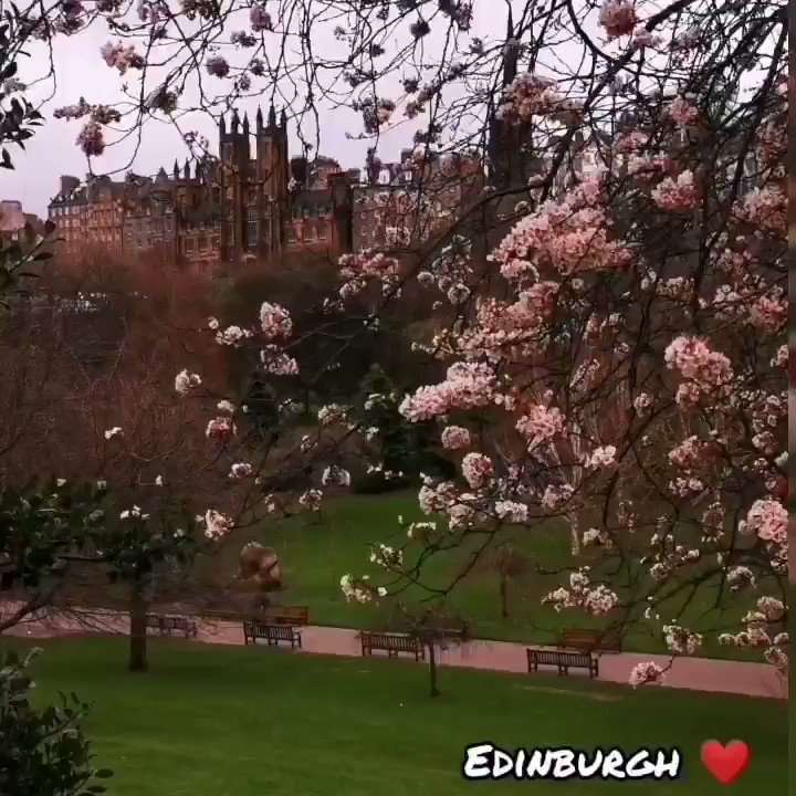 Edinburgh  #Edinburgh #Scotland #Scottish #travelphotography #travelgram pic.twitter.com/LV00cLatYl