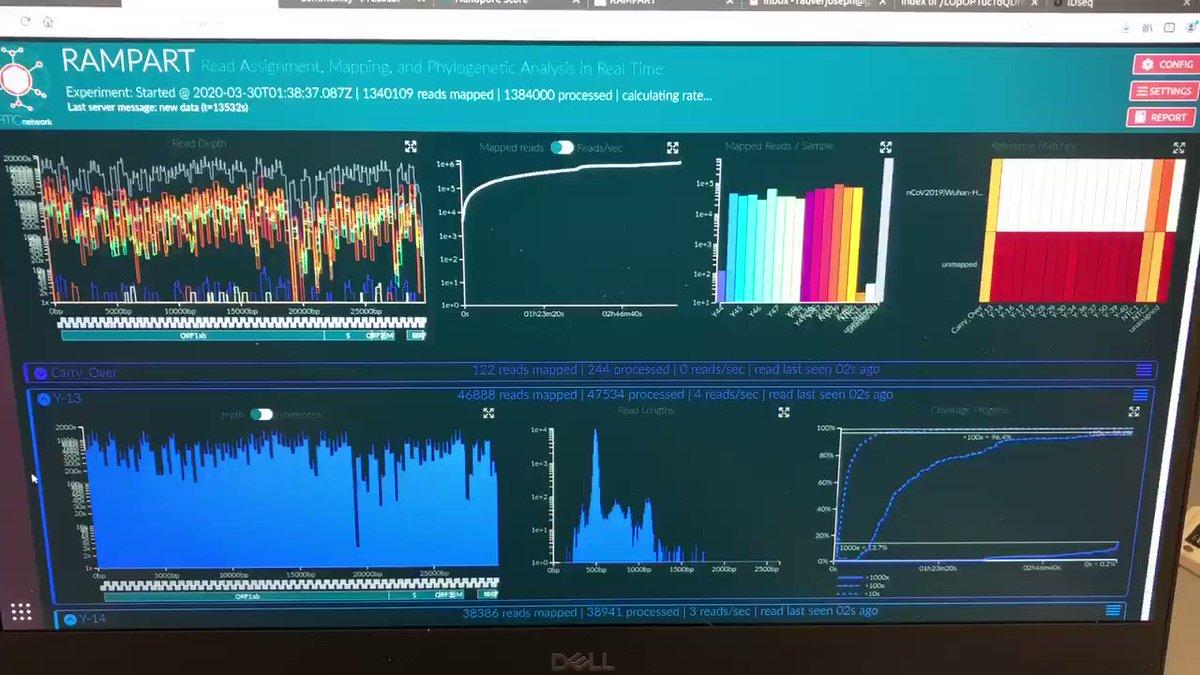 Colorful genomes 🧬 🌈 @NetworkArtic @nanopore @NathanGrubaugh