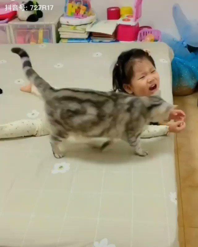 危険がないよう子供の面倒を見る猫尊い....