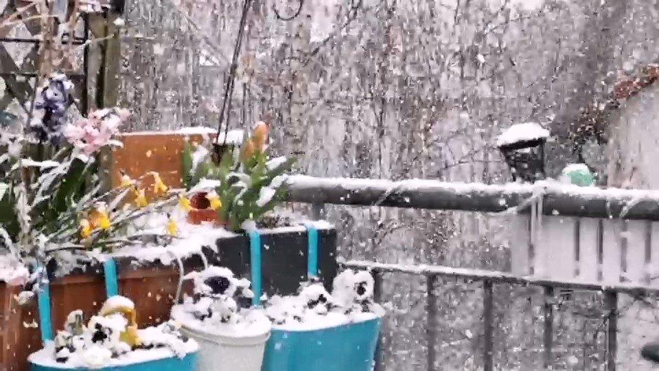 ... and it doesn't stop!  Snow!! ... #Berlin pic.twitter.com/uGsZV0Ah3U