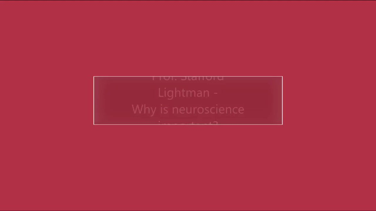 Image for the Tweet beginning: What does neuroscience mean to
