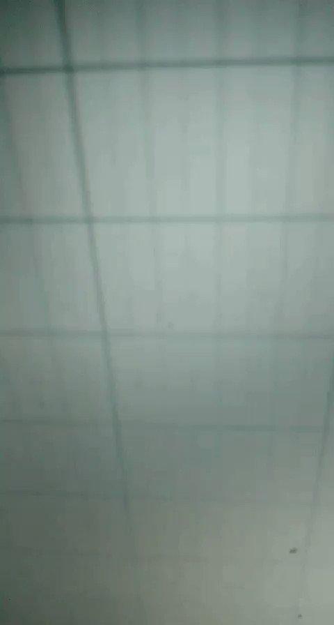 FIRST WAV OF THE DAY LET'S GOOO #np #fl #flgang #beats #covid #dark #trap #morphine #pippenpic.twitter.com/74VxFChj83