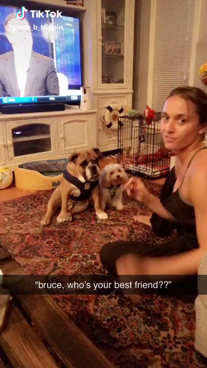 RT Who is your best friend? #dogsoftwitter #yourdailyawwwwww twitter.com/gcouros/status… twitter.com/gcouros/status… via twitter.com/gcouros/status…
