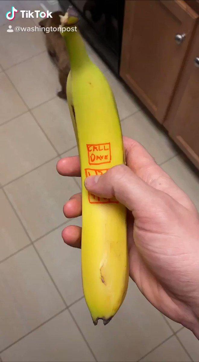 Today's first @washingtonpost quarantine TikTok features banana phones https://vm.tiktok.com/t3hUnU/