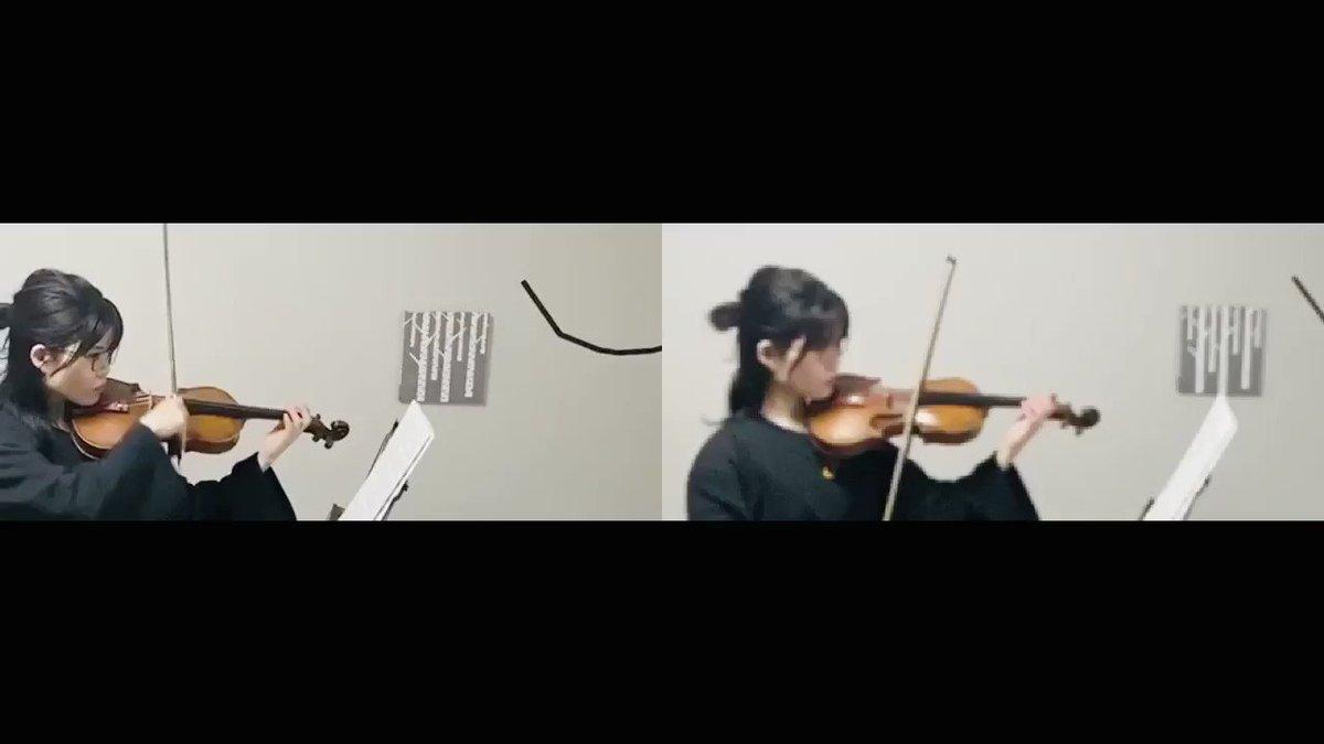 ひとりデュオしてみた🎻🎻合わせるのも編集も難しかった…Bartok/44duos No.32#音楽#おうち時間#弾いてみた