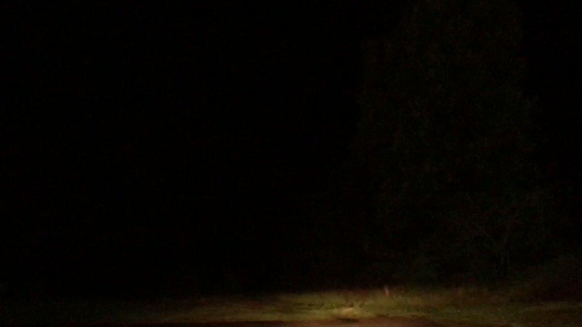 Quite a lightning show west of Moundville #alwx @WBRCnews @mattdanielwx #SevereStorms