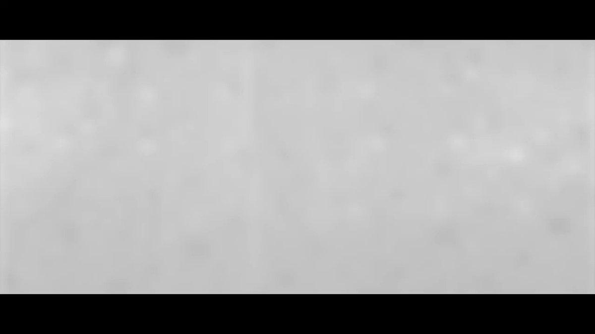 【#乃木恋4周年】4月10日 15:00〜🎊乃木恋の4周年を記念してお楽しみ企画を開催中🎊/📣今なら最大4⃣0⃣連無料ガチャ実施中✨\続々とお楽しみ企画を実施していきます🎁お見逃しなく🤩#乃木恋